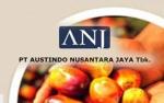 Austindo Nusantara Lanjutkan Bangun Kebun Sawit di Papua