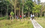 Pemkab Kotim Ajak Investor Kembangkan Pariwisata Daerah