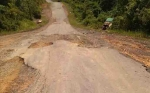 Jalan Desa Kenawan Rusak Rawan Picu Kecelakaan