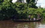 Detik-detik Menegangkan Tim BKSDA Sampit Mendekati Buaya di Sungai Mentaya