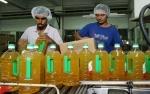 Impor CPO India Diprediksi Meningkat