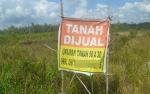 Harga Sebidang Tanah di Kasongan Tak Ikuti NJOP