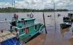 Penjaga Kelotok Diduga Tenggelam di Sungai Jaya Kelapa