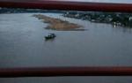 Aparat Diminta Cek Kayu Log yang Dimilirkan di Sungai Katingan