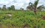 Warga Lengkapi Data Laporan untuk Perkarakan Kasus Tanah Pelita Barat