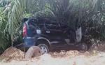 Hilang Kendali, Mobil Tabrak Pohon Kelapa Sawit