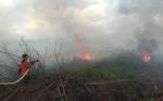 Lahan Gambut di Jalan Mahir Mahar Kembali Terbakar