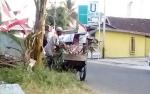 Masih ada Warga Kuala Pembuang Buang Ranting Pohon di TPS