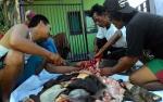 DKPP Pastikan Seluruh Hewan Kurban di Palangka Raya Layak Konsumsi