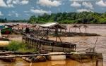 KTNA Kalteng Sambut Baik Rencana Pembangunan Pabrik Pakan Ikan