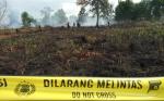 Polisi Tangani Enam Perkara Kebakaran Hutan dan Lahan