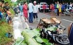 Pengendara Motor Meninggal Dunia Pascatabrak Potongan Pohon