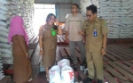 Beras Sejahtera Untuk Disalurkan di Barito Selatan Layak Konsumsi