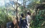 Rumah Kosong Yang Terbakar Acap Jadi Tempat Singgah Anak Jalanan