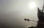 Buaya Kembali Muncul di Perairan Sungai Mentaya Dusun Belanti