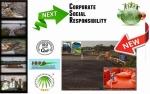 Pemerintah Bidik 70% Industri Sawit RI Bersertifikasi ISPO