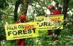 GAPKI Desak Pemerintah Tangani Info Hoaks Soal Sawit