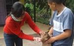 Kecamatan Selat Terbanyak Dilakukan Vaksinasi Rabies