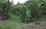 Upah Minimum Kabupaten Sukamara Ditetapkan Rp 2,8 Juta