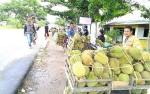 Durian Masih Banjiri Kota Kasongan