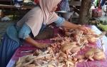 Harga Daging Ayam Potong di Kasongan Melonjak Jelang Natal Dan Tahun Baru