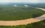 Belum Ada Hutan Adat di Kalteng Dapat Pengakuan Negara