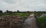 Tumpukan Sampah Diduga Jadi Penyebab Serangan DBD Massal di Sampit