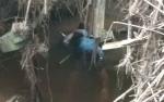 Karyawan Perkebunan Sawit di Antang Kalang Ditemukan Tewas Mengapung