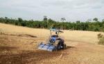 Dinas Pertanian Barito Utara Prioritaskan Program Penguatan Pengolahan Lahan