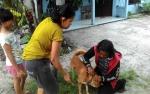 Kasus Rabies di Palangka Raya Diklaim Turun di 2018