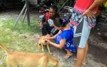Demi Jaga Kesehatan Anjingnya, Pendeta Ini Panggil Petugas Vaksin Rabies