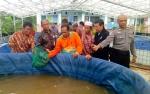 Dinas Perikanan Kapuas Berdayakan Pembudidaya Ikan Lele dengan Sistem Bioflok