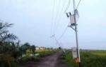 Puting Beliung Tumbangkan Tiang Listrik, Desa Kahuripan Permai Gelap Gulita