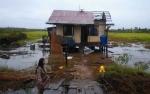Angin Puting Beliung Terjang Dua Desa di Kapuas