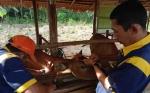 Pemkab Kapuas Pantau Penyakit Jembrana Sapi Bali di Tiga Kecamatan