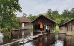 115 KK Warga Desa Sungai Ubar Mandiri Jadi Korban Banjir