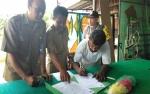 Pemilik Kukang dan Uwa-Uwa Ikhlas Serahkan ke BKSDA Kalteng