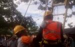 Petugas PLN Kesetrum saat Potong Dahan Pohon