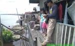 Geger Penampakan Buaya di Baamang, Setelah Diobservasi Ternyata Hewan ini