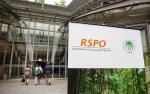 Pendaftar Sertifikasi Rendah, RSPO Giatkan Sosialisasi