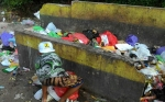 Wali Kota Tergetkan Lima Tahun TPS di Palangka Raya Sudah Diganti Depo Sampah