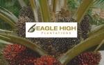 Eagle High Yakin Mampu Dongkrak Kinerja Tahun Ini