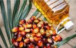 Ramadan Belum Mampu Dongkrak Permintaan Minyak Sawit