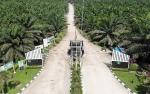 Pabrik Biogas Bakal Dongkrak Kinerja Sawit Sumbermas