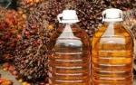 Harga Minyak Sawit di Kisaran RM2.300-RM2.400 Tahun Ini