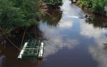 Perangkap Buaya di Sungai Seranggas akan Dibongkar