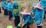 TP PKK Tanam Pohon Khas Kalteng di Kebun Percontohan