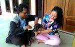 DKPP Palangka Raya Targetkan 2025 Bebas Rabies