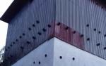 Jumlahnya Ribuan, Baru 109 Gedung Sarang Walet di Kotawaringin Timur Rutin Bayar Pajak