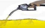 Serapan CPO Untuk Biodiesel Capai 6 Juta Ton di 2019